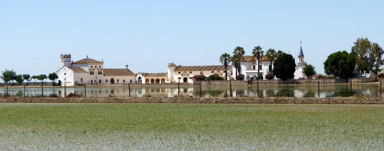 Diario del Viajero. Paisaje y paisanaje en las marismas del Guadalquivir: Isla Mayor, Isla Menor e Isla Mínima